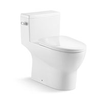 Excess Eddy One-piece Toilet